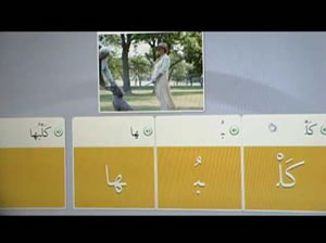 rosetta stone arabic drawbacks