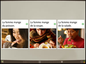 rosetta stone french culture lessons