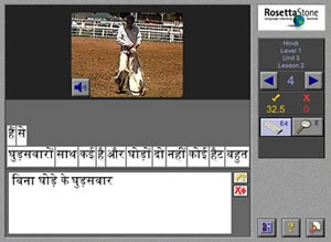 rosetta stone hindi learning methods